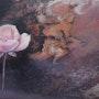 Rose. Isabelle Le Pors