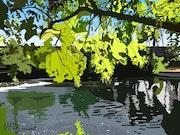 2019-09-08 Le jardin de Poppy. Michel Normand