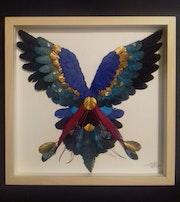Petit Perroquet tricolore. Lisa Ingrassia