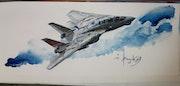 F14 Tomcat.