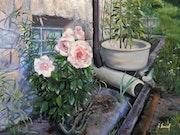 Rose bed.