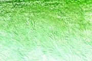 Field of green. Digital landscape.. Freedowars