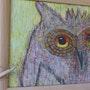 Une visiteuse inattendue dans ma galerie.. Fk
