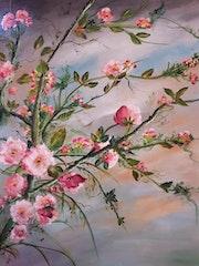 Cerisier du japon.