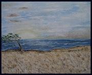 La savane sous le vent.