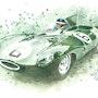 Jaguar Type D.. 1967