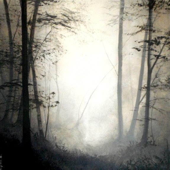 «Ombres Chinoises»; Foret en clair-obscur. Sophie Duplain Sophie Duplain