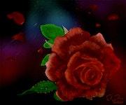 Rote Rose mit Tautropfen.