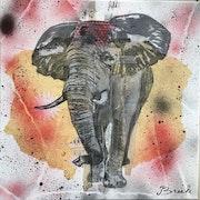 Mon éléphant.