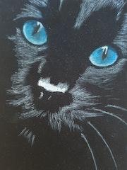 Le Chat. Elwan Gété