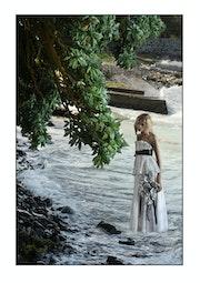 La poésie de l'Arbre des eaux à la mariée.