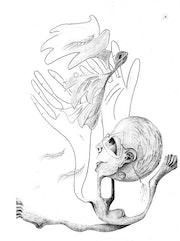 A volar!. Elena De Negri
