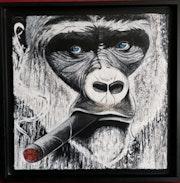 Gorille aux yeux bleus.
