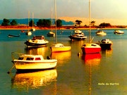 Bateaux sur le Bassin.