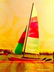 Catamaran sur le bassin d'Arcachon.