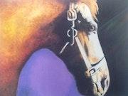 Mild Horses. Chelsea Chelsea