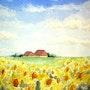 Landscape sunflowers. Nazzo Valenti