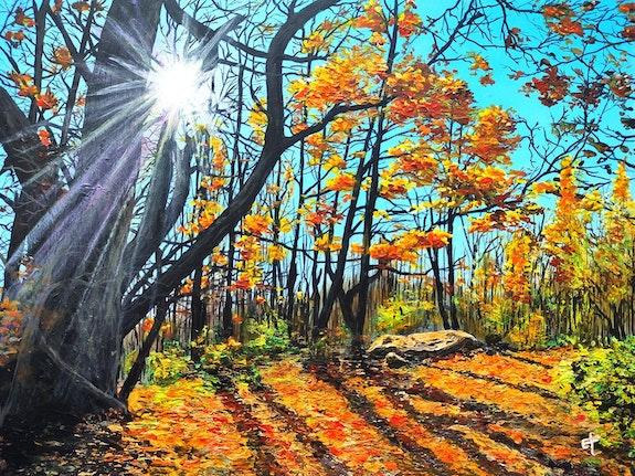 Sous-bois en automne vers Chirens. Eric F. Eric F.