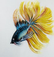 Betta Fish No. 4 (2021, Detail). Danny Liu