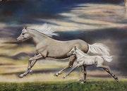 Horse. Maryam Gholami62