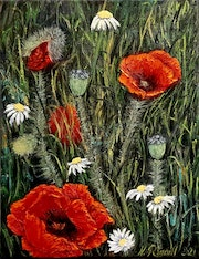 Coquelicots. Nadyarl