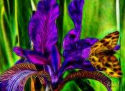 Цветы 0141.