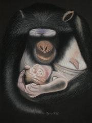 Tendresse et Amour d'une mère Chimpanzé. Michel. Gouyet