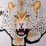Leopard Africain nom Felidae. Lydie Frances-Ingles