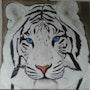 Tete Tigre blanc. Lydie Frances-Ingles