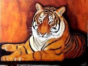 Tigre mevy.