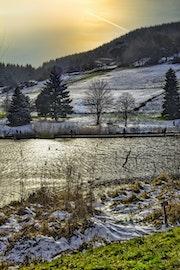 Herbe, neige, eau, arbres, ciel.