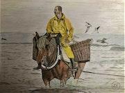 Pêche aux crevettes en mer du nord. Πr Dessins