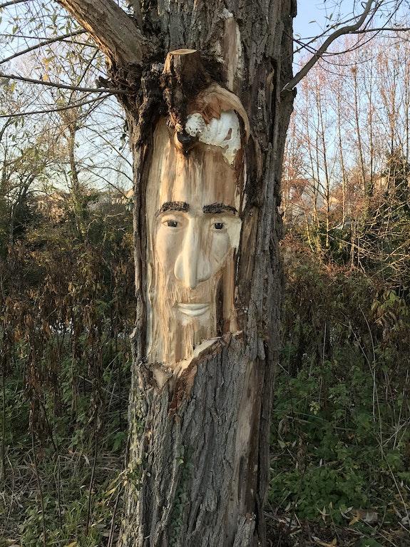 L'Esprit de l'arbre. Rémy Provost Remy Provost