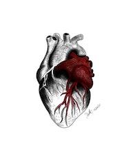 Corazón latiente. Daniel Vicente