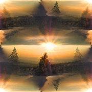 Ronde des sapins pour magnifier le soleil.