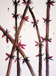 Purple Bamboo.