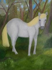 Wild horse. Kirill Emlevskiy