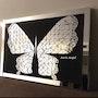 Mirror butterfly.