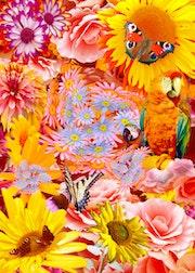 Dschungel, Poster Kunstdruck mit Photoshop erstellt.