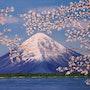Le Mont Fuji. Alicia Cáceres