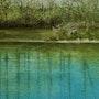 L'étang des Mouilles. Claudublart