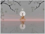 Bouddha lunaire.