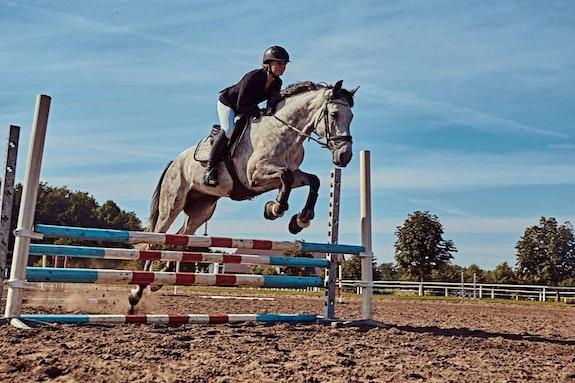 Show jumping.  Hazel Mae Resullar