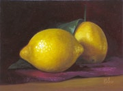 Citrons sur nappe / Lemons on tablecloth. Hellbay
