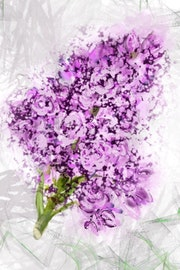 A branch of flowers. Kati