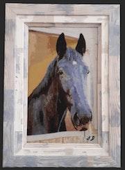 Portrait cheval.