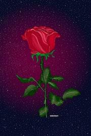 Rose Celeste. Isabelle Duhem