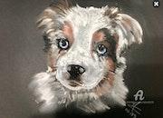 La petite chienne Plume.