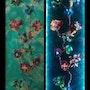 Les nympheas. Art Et Deco Bonopera