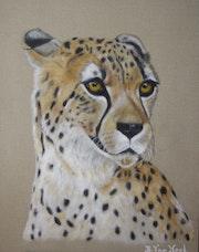 Cheetah 3.